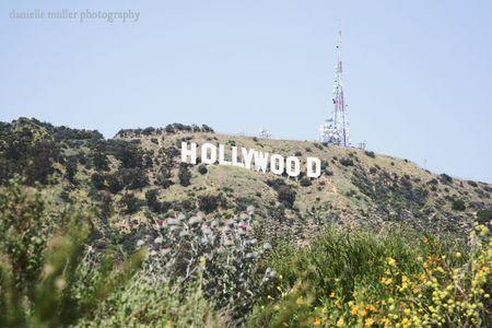 California 11