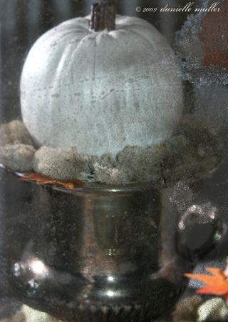 MirrorImagePumpkin