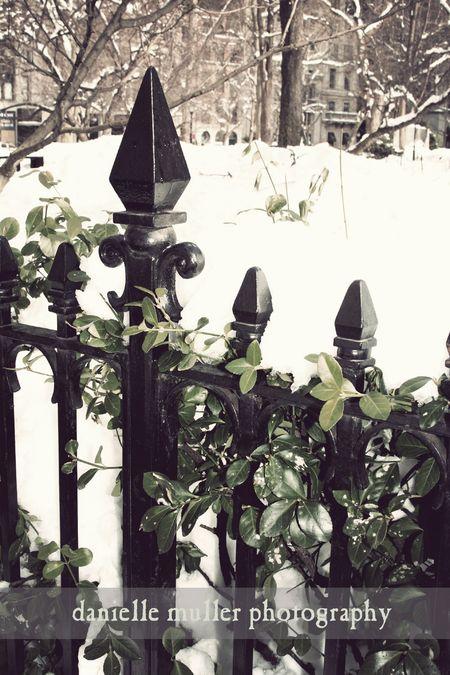 Madison Avenue Park 1