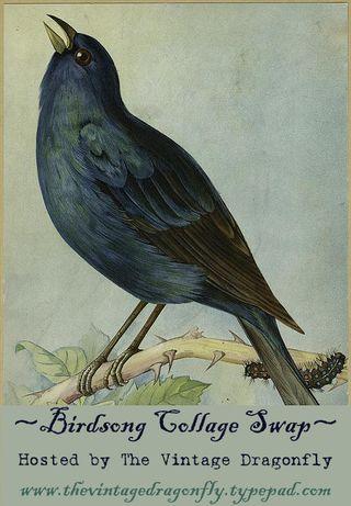 Birdsong Collage Swap LARGE