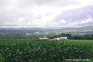 Farms1