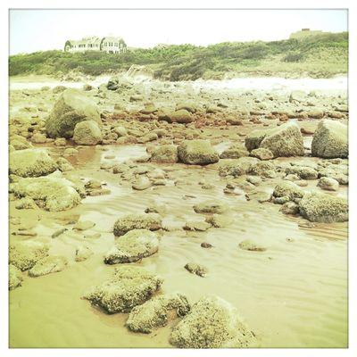 Sesuit Beach 1