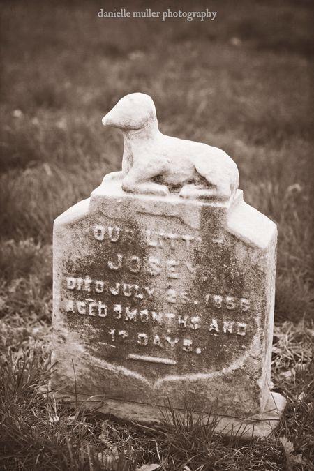 Greenwood Cemetery 7