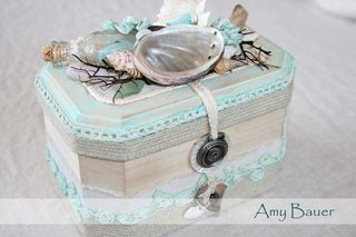 Amy Bauer Box
