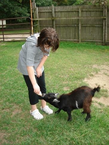 Julia_feeding_goat