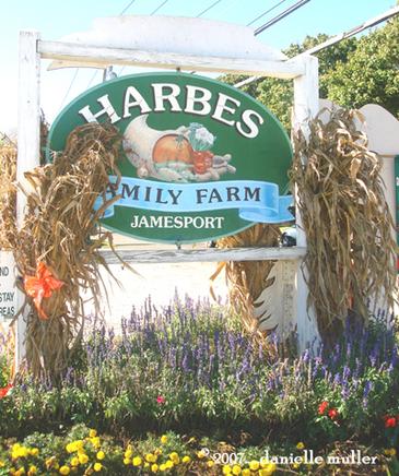 Harbes_farm_1_9
