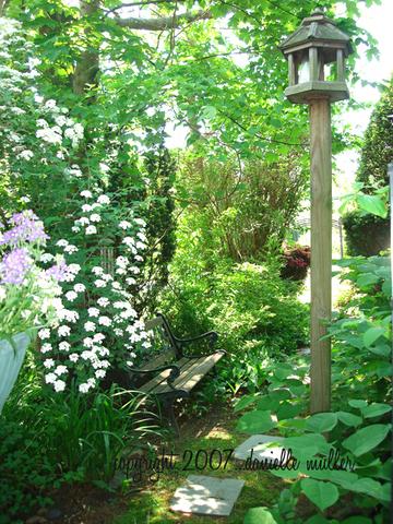Side_garden_2_copy