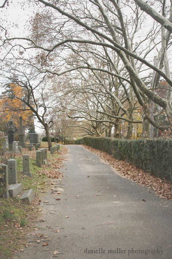 Sleepy Hollow Cemetery 2