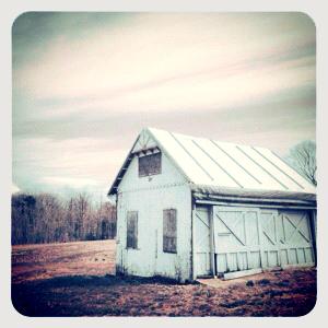 White barn (2)