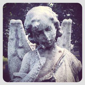 Angel statue @ calvary cemetery