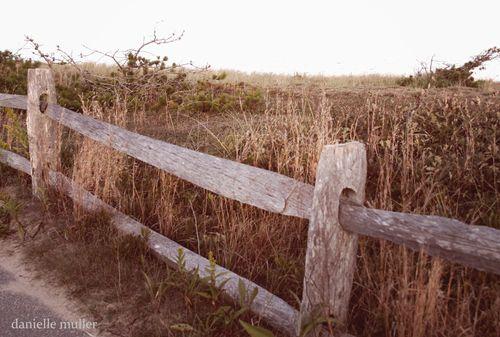 Fence near ocean