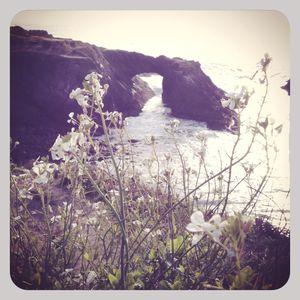 Natural bridge, mendocino, ca