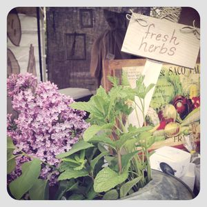 Fresh herbs sign with lilacs