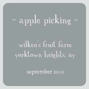 Text square for wilkens post 1