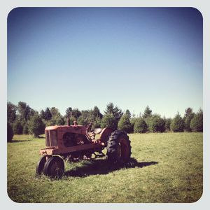 Tractor at wilkens