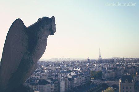 Notre Dame Gargoyle 4