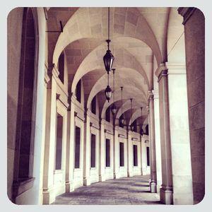 Arches in washington dc