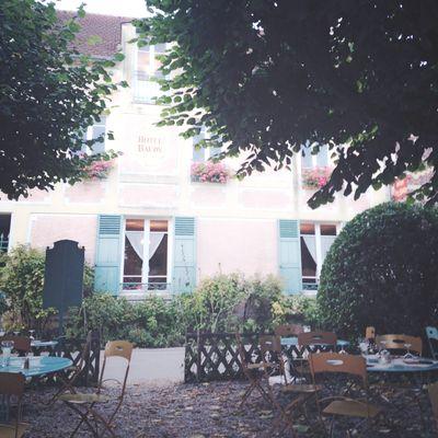 Monet's garden 21