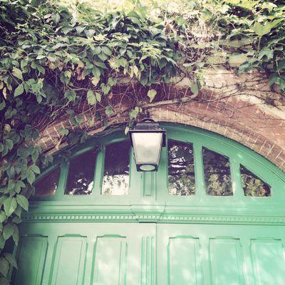 Monet's garden 19