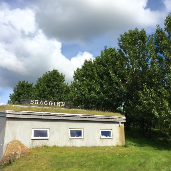 Bragginn 6